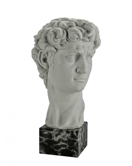 """DAVID"" Michelangelo (head, marble)-1"